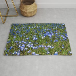The Forest Floor Blues Rug