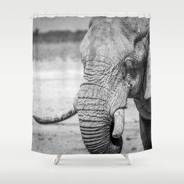 B&W Elephant 10 Shower Curtain