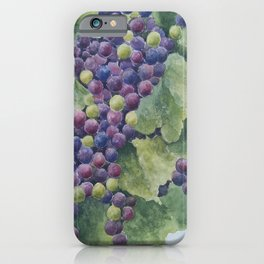 Napa Valley Grapes iPhone Case