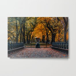 Autumn Color of Central Park The Mall Metal Print