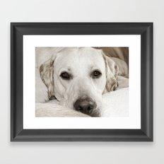 Brannoc Framed Art Print