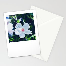 Hibiscus Perfection Stationery Cards