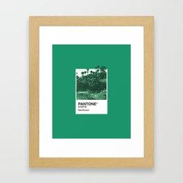 PANTONE SERIES – RAINFOREST Framed Art Print