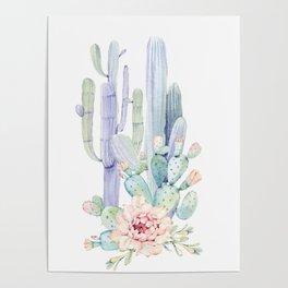 Mixed Cacti 2 #society6 #buyart Poster