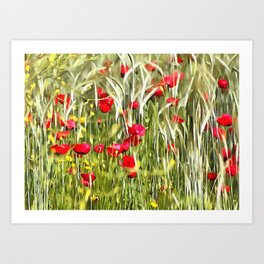 Red Corn Poppies Art Print