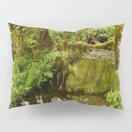 Rainforest Reflection Pillow Sham