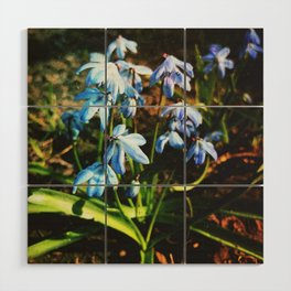 just a lovely flowers Wood Wall Art