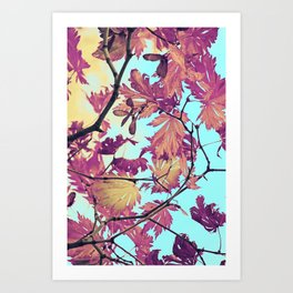 Japanaese Tree with hänging nouses in the Sun Art Print