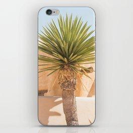 Marfa Oasis iPhone Skin