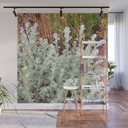 Watercolor Forb, Fringed Sagebrush 01, Boulder, Colorado, Dainty and Savory Wall Mural