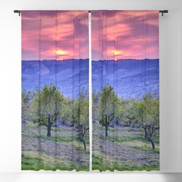 Almonds. At red sunset. Rural beauty. Spain Blackout Curtain