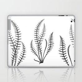 Minimal Black Fern Laptop & iPad Skin