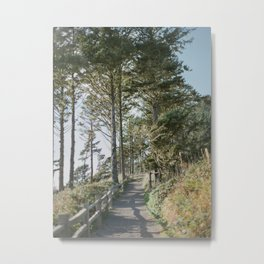 Oregon Coast Path / Fine Art Film Photography Metal Print
