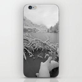 Wintry Lake Bohinj iPhone Skin