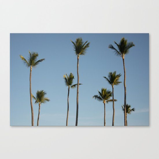 Palms Punta Cana Canvas Print