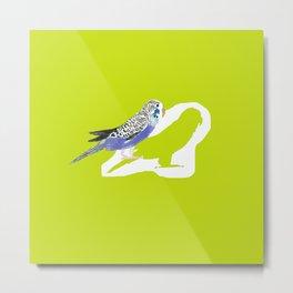 Pistachio shadow parakeet Metal Print