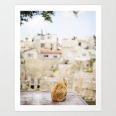 Cat Overlooking Ancient Ruins, Israel Art Print
