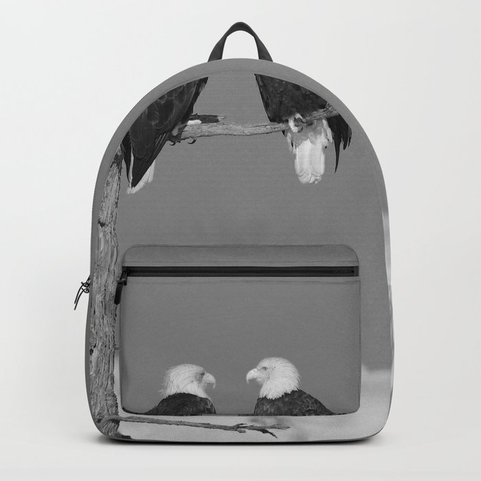 Perched With A View Duo - B & W Backpack