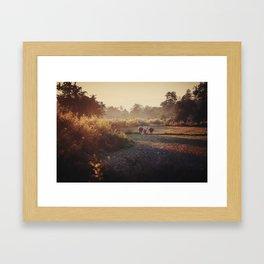 Asia 2 Framed Art Print