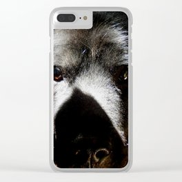 Serious in the sunshine Clear iPhone Case
