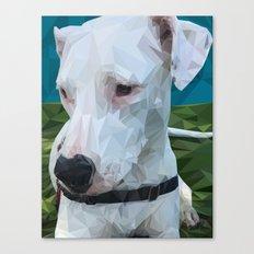 Rocky Dog Canvas Print