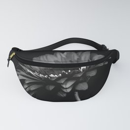 Daisy gerbera. Black and white Fanny Pack
