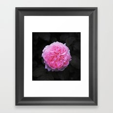 Flower (Beautiful) Framed Art Print