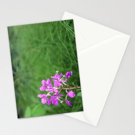 Fireweed Wildflower Stationery Cards