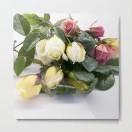 tiny roses Metal Print
