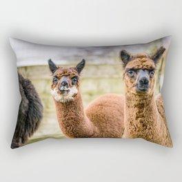 Cheeky Alpacas Rectangular Pillow