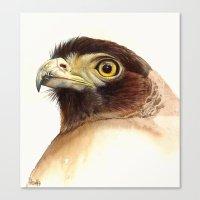 eagle Canvas Prints featuring eagle by Alessandra Razzi Illustrazioni
