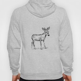 Young deer black and white sketch Hoody