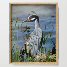 Heron with a broken wing Serving Tray