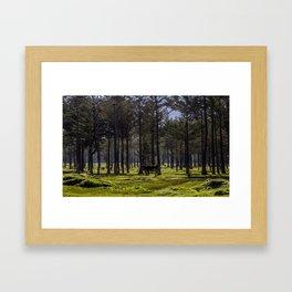 MT KIPIPIRI Framed Art Print