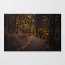 Twilight Hour Canvas Print