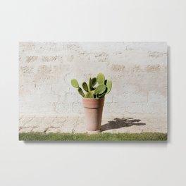 Potrait of a Cactus Metal Print
