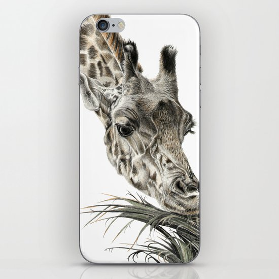 Giraffe - A Long Munch iPhone & iPod Skin