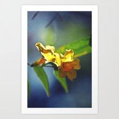 Supra // Chromatic Art Print
