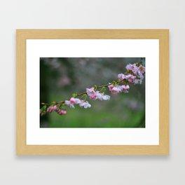 tsunami blossom 7560 Framed Art Print
