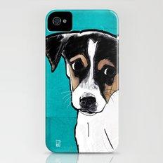 Dog Rat Terrier iPhone (4, 4s) Slim Case