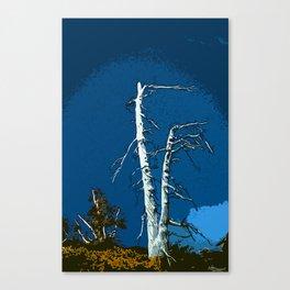 Wind Blasted Canvas Print