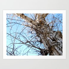 Tree Naked Art Print