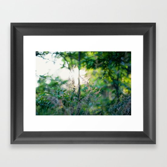 Summer Light Framed Art Print