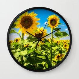 Three's Company - Trio of Sunflowers in Kansas Wall Clock