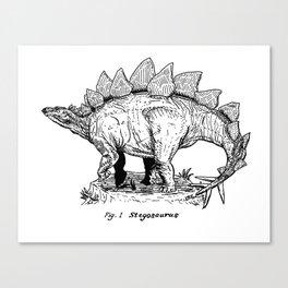 Figure One: Stegosaurus Canvas Print