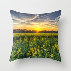 Late Afternoon April Field Throw Pillow