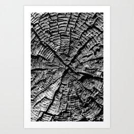 The X Art Print