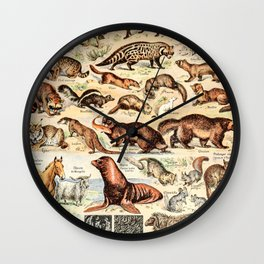 Cute Animals // Fourrures by Adolphe Millot XL 19th Century Science Textbook Diagram Artwork Wall Clock