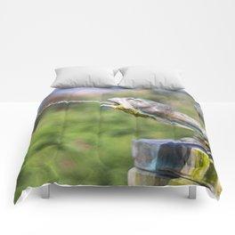 Glisten Comforters