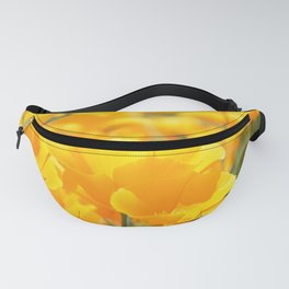 Yellow Poppies Fanny Pack